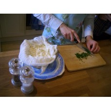 Cottage Cheese Making Starter